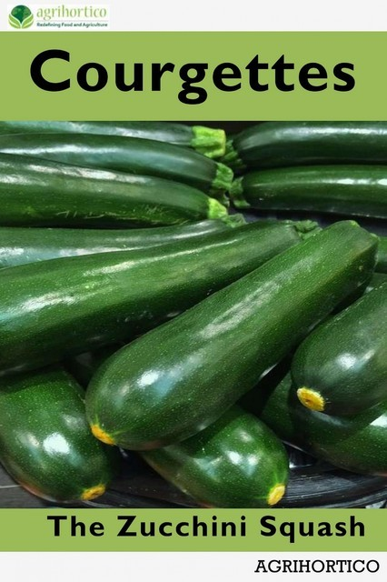 Courgettes, Agrihortico CPL