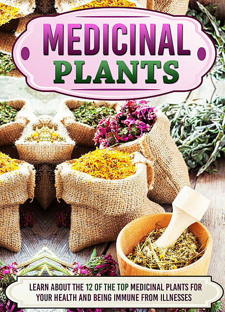Medicinal Plants Learn About The 12 Of The Top Medicinal Plants For Your Health And Being Immune From Illnesses, Old Natural Ways