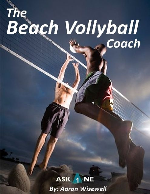 The Beach Volleyball Coach, Aaron Wisewell