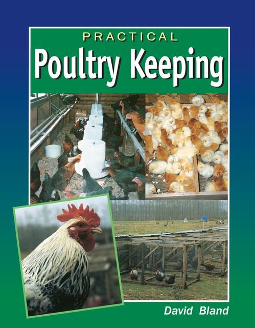 Practical Poultry Keeping, David Bland