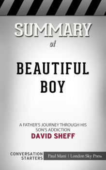 Summary of Beautiful Boy: A Father's Journey Through His Son's Addiction: Conversation Starters, Paul Mani