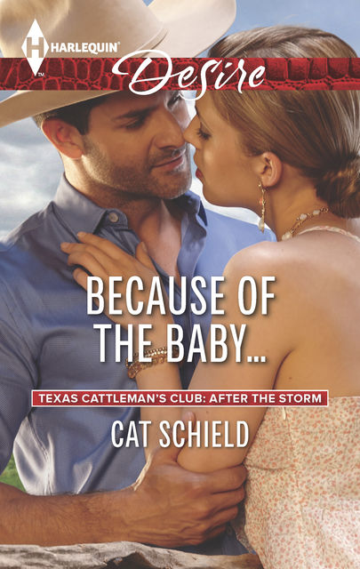 Because of the Baby, Cat Schield