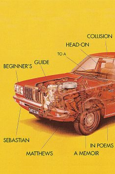 Beginner's Guide to a Head-On Collision, Sebastian Matthews