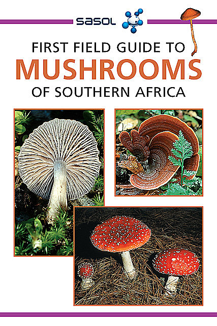 First Field Guide to Mushrooms of Southern Africa, Margo Branch