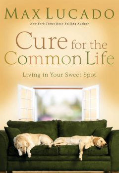 Cure for the Common Life, Max Lucado
