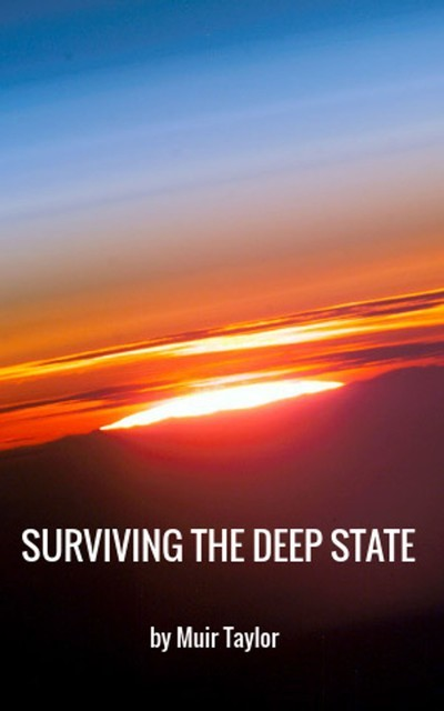 SURVIVING THE DEEP STATE, Muir Taylor