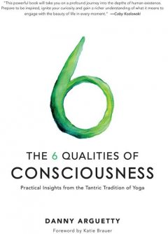 The 6 Qualities of Consciousness, Danny Arguetty
