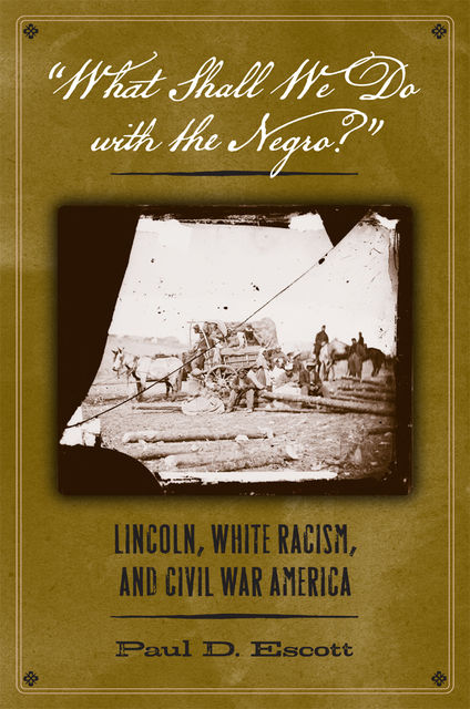 """What Shall We Do with the Negro?"", Paul D.Escott"
