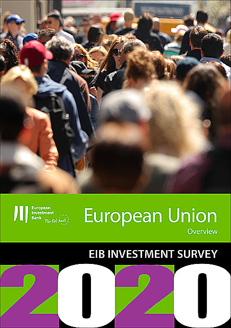 EIB Group Survey on Investment and Investment Finance 2020: EU overview, European Investment Bank