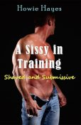 A Sissy in Training, Howie Hayes