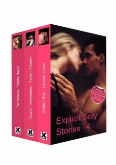 Explicit Sexy Stories, Tamsin Flowers, Tabitha Rayne, Landon Dixon