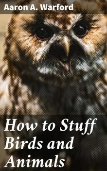 How to Stuff Birds and Animals, Aaron A. Warford