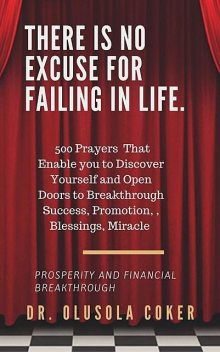 There is no excuse for failing in life, Olusola Coker