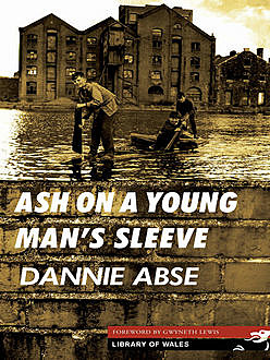 Ash On a Young Man's Sleeve, Dannie Abse
