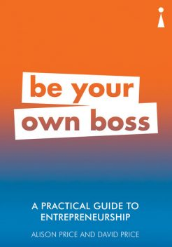 A Practical Guide to Entrepreneurship, David C. Price, Alison Price