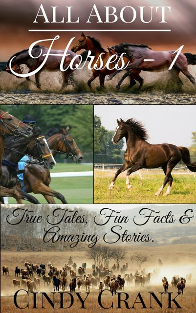 All about Horses – 1, Cindy Crank