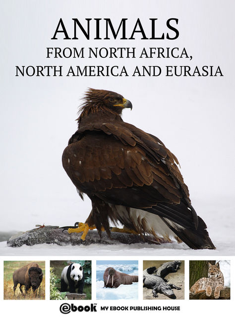 Animals from North Africa, North America and Eurasia, My Ebook Publishing House