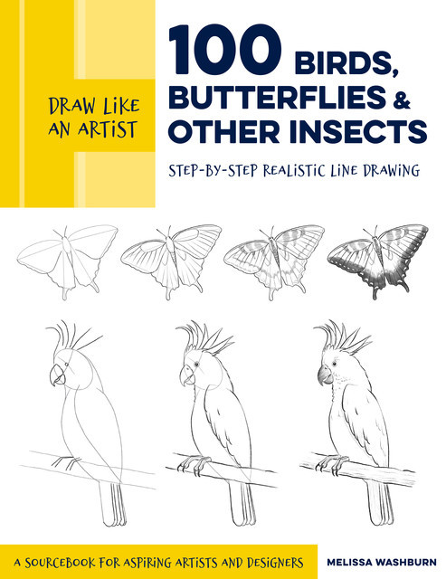 Draw Like an Artist: 100 Birds, Butterflies, and Other Insects, Melissa Washburn