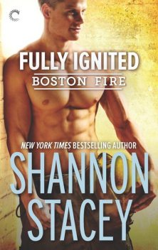 Fully Ignited, Shannon Stacey