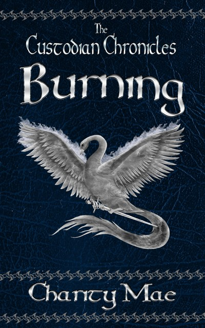 The Custodian Chronicles: Burning, Charity Mae