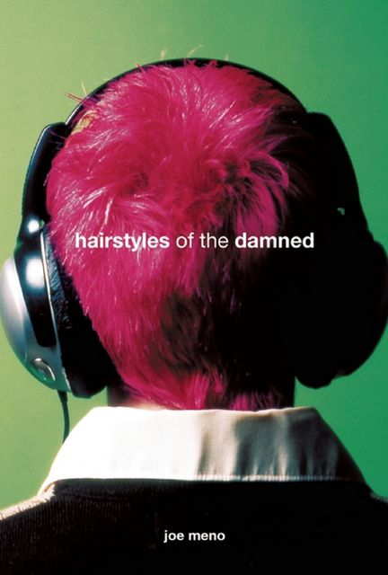 Hairstyles of the Damned, Joe Meno