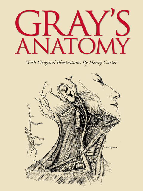 Gray's Anatomy, Henry Gray
