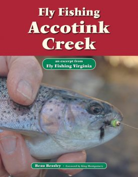 Fly Fishing Accotink Creek, Beau Beasley