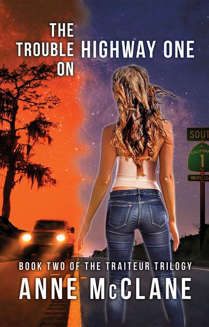 The Trouble on Highway One, Anne McClane