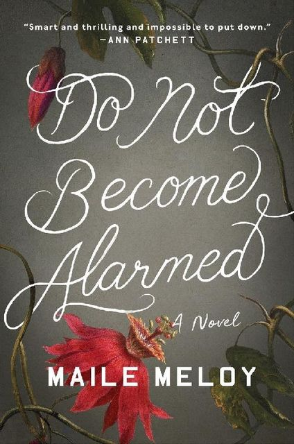 Do Not Become Alarmed, Maile Meloy