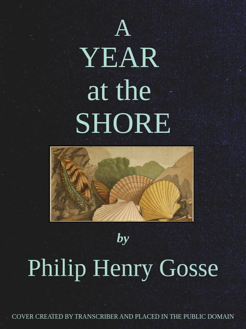 A Year at the Shore, Philip Henry Gosse
