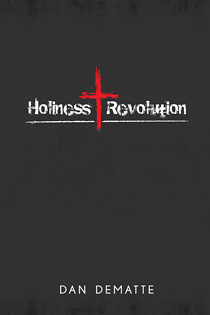 Holiness Revolution, Dan DeMatte