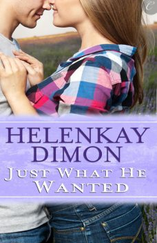 Just What He Wanted, HelenKay Dimon