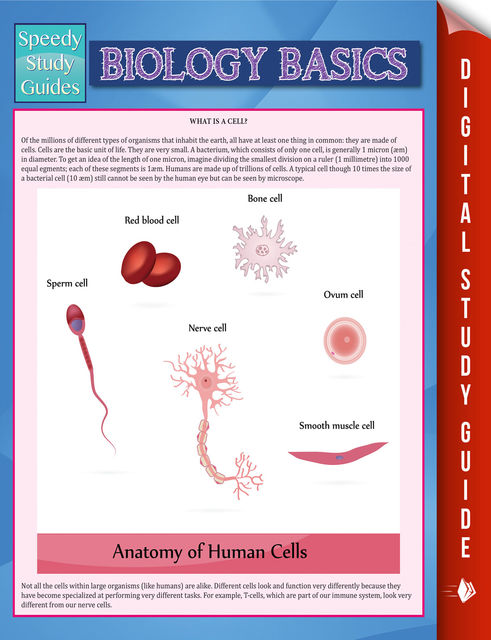 Biology Basics (Speedy Study Guide), Speedy Publishing