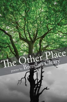 The Other Place, Brendan Cleary