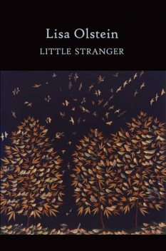 Little Stranger, Lisa Olstein