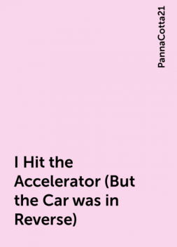 I Hit the Accelerator (But the Car was in Reverse), PannaCotta21