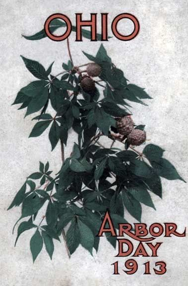 Ohio Arbor Day 1913: Arbor and Bird Day Manual / Issued for the Benefit of the Schools of our State, Various