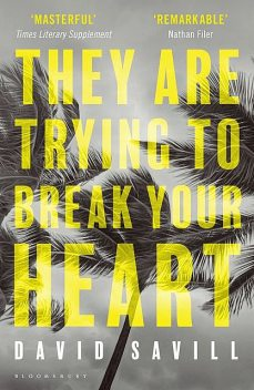 They are Trying to Break Your Heart, David Savill
