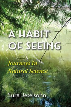 A Habit Of Seeing, Sura Jeselsohn