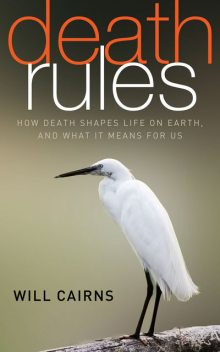 Death Rules, Will Cairns