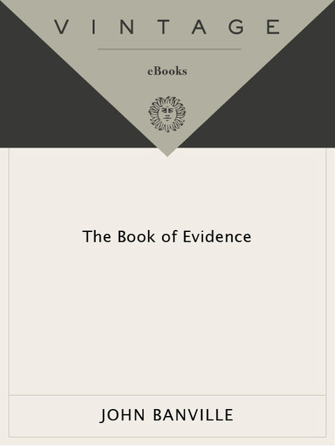 The Book Of Evidence, John Banville