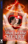 Shot to the Heart, Charlotte Stein, Elizabeth Cage, Janine Ashbless, Sue Williams, J. Manx