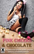 Pink Cheeks and Chocolate, Medea Mor, Carole Archer, Kate Dominic, Bertram Fox, Amy LeBlanc