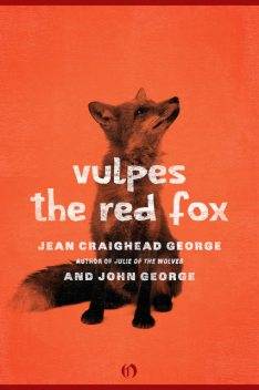 Vulpes, the Red Fox, George John, Jean Craighead George
