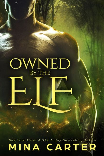 Owned by the Elf, Mina Carter