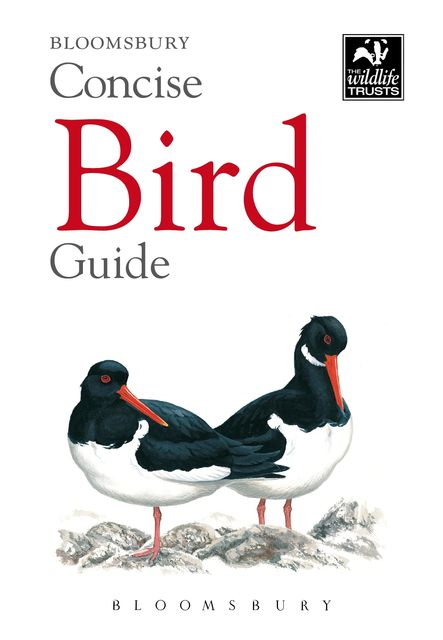 Concise Bird Guide, Bloomsbury Publishing
