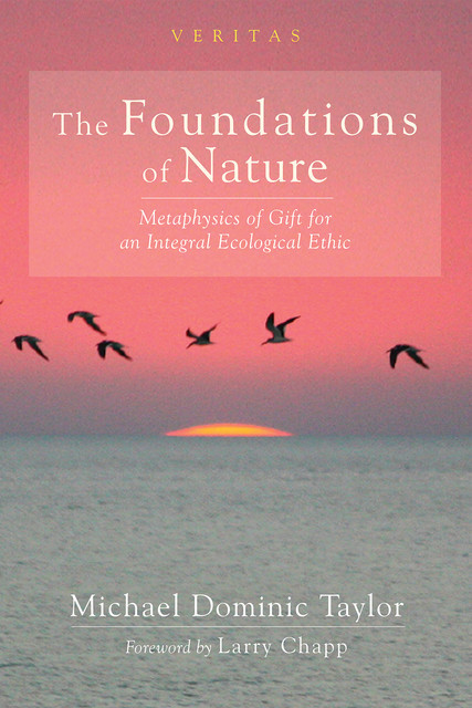 The Foundations of Nature, Michael Taylor