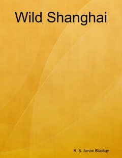 Wild Shanghai, R.S. Arrow Blackay