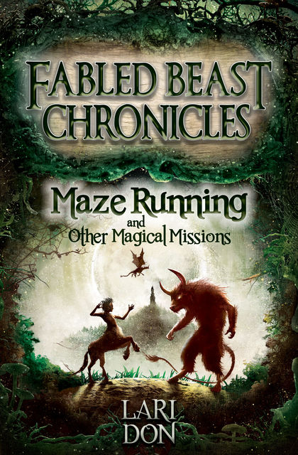 Maze Running and other Magical Missions, Lari Don