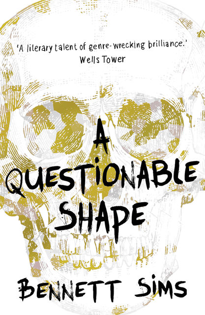 A Questionable Shape, Bennett Sims